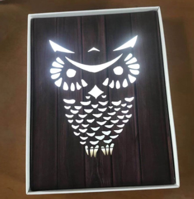 Owl Shape Led Light-ZM-LTG331